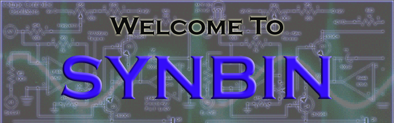 Welcome to SynBin